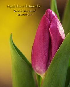 Digital Flower Photography Book Now Available For Presale Orders